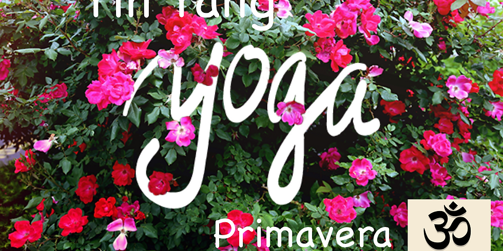 Taller de Yin Yang Yoga, Especial Primavera