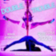 DoublePoleWorkshop.jpg