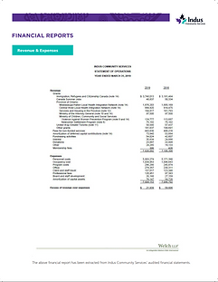Indus Financial Report.png