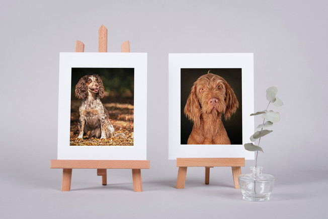 These gorgeous easels display your images beautifully