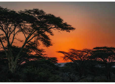 Africa - Kwazulu Natal