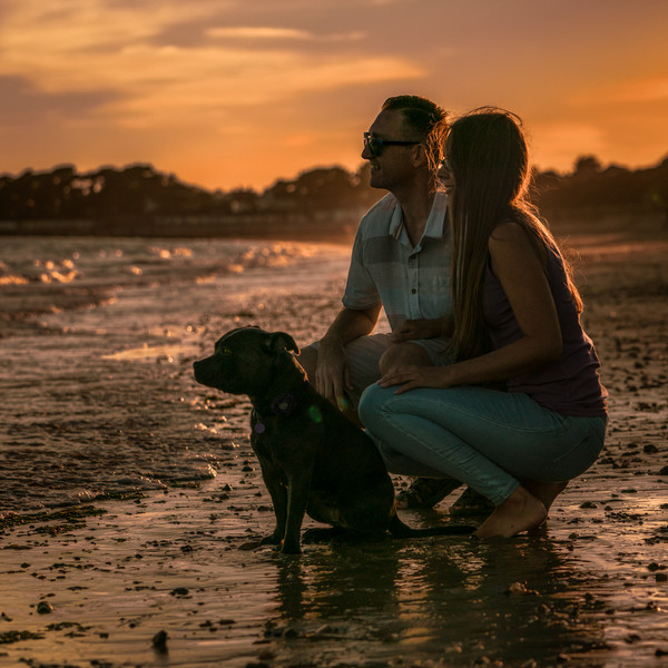 Sunset with your dog