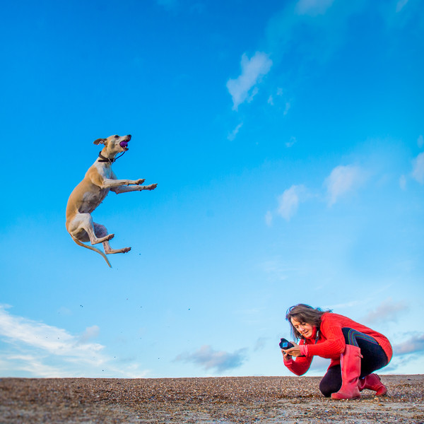 Me, loving my job.  Dog Photographer Ham