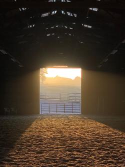 Indoor arena at sunrise.