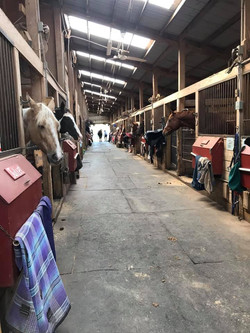 Dinner time at the Arena Barn.