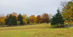 Red Barn field in the fall.