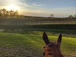 Sunset trail ride.