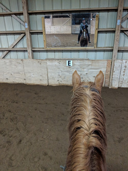 One of the indoor arena mirrors
