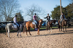 Working Equitation clinic Nov 2020