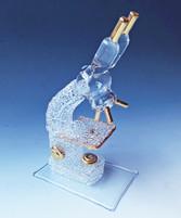 Microscope Graduation Gift
