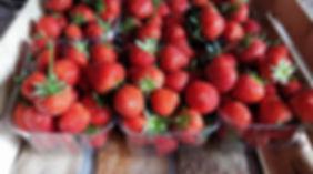 strawberries-at-graveley-fruit-farm.jpg