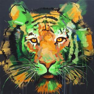 tiger19