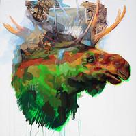 moose19