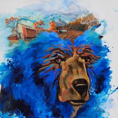 bear19