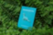 藍恐龍 (2).jpg