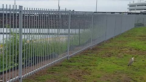 16508474_1324792090912538_12071926325419pool-fencing, fencing, industrial-fencing, electric-gate, automation, security-fencing, darwin, fencing-contractor