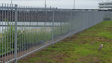 16508474_1324792090912538_12071926325419pool-fencing, fencing, industrial-fencing, electric-gate, automation, security-fencing, darwin, fencing-contractor