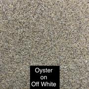 Oyster on White.jpg