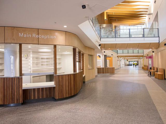 Palmerston-Hospital-with-Terrain-Custom-