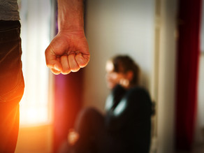 Criminal Law : Reforms to Domestic Violence Laws