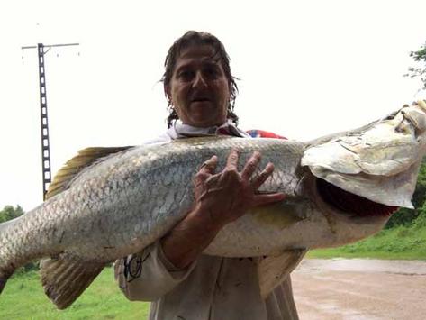 Alex's Fishing Report 5 January 2017