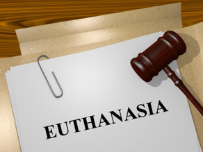 Pressure on Queensland Government to Legalise Euthanasia