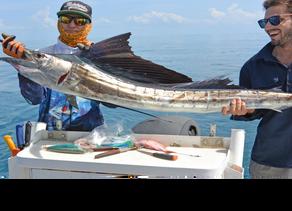 Alex's Fishing Report 15 December 2016
