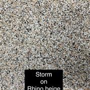 Storm on Rhino Beige.jpg
