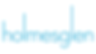 Holmesglen Institute Logo.png