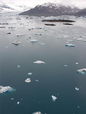 bear glacier lagoon with icebergs and gl