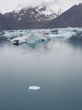 icebergs floating in calm water.jpeg