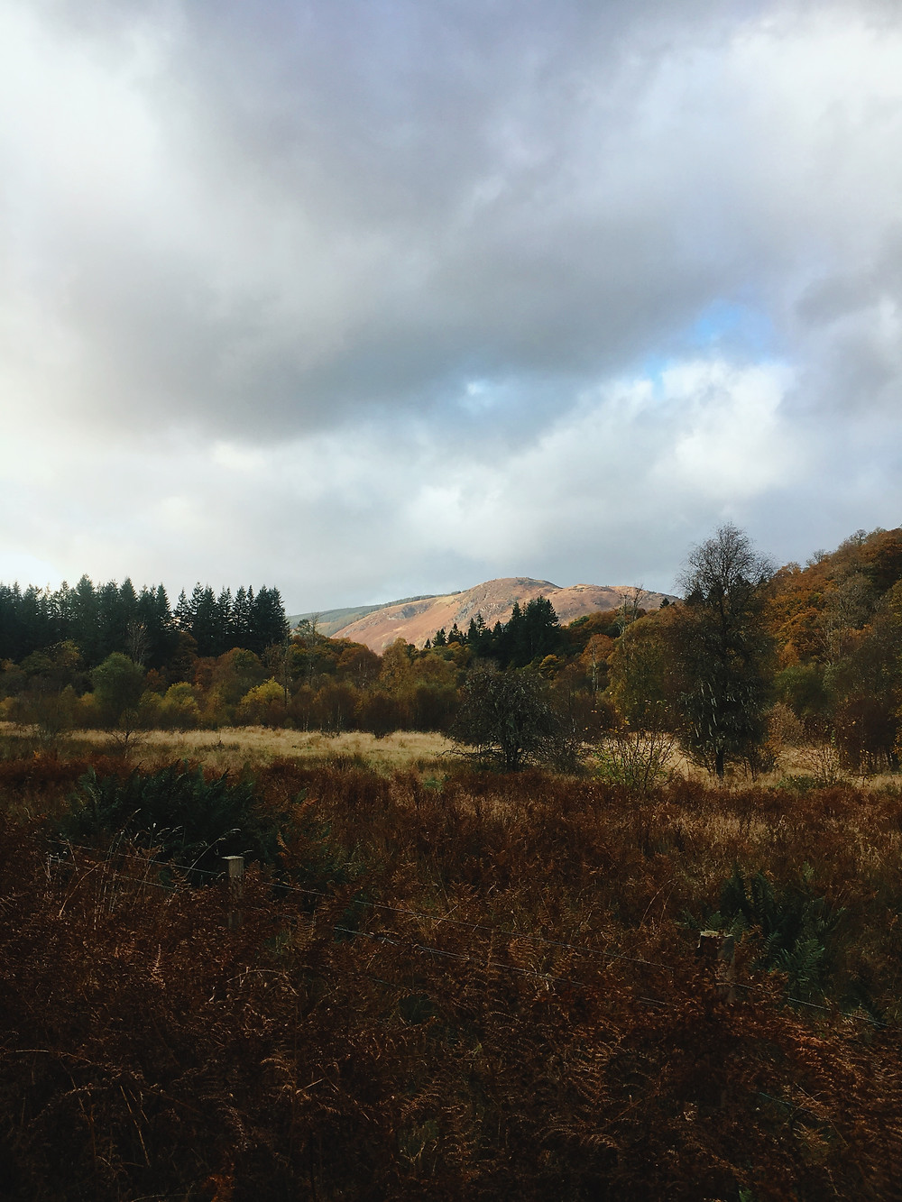 a hill in the scottish landscape with blue skies and autumn colours