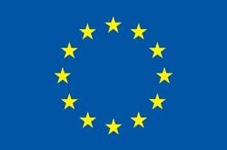 Horizon 2020 European Project