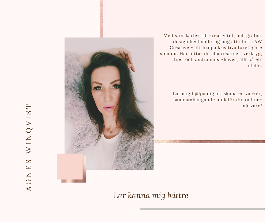 Agnes WInqvist - om.png