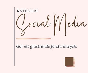 Sociala Medier - Shop kategori.png