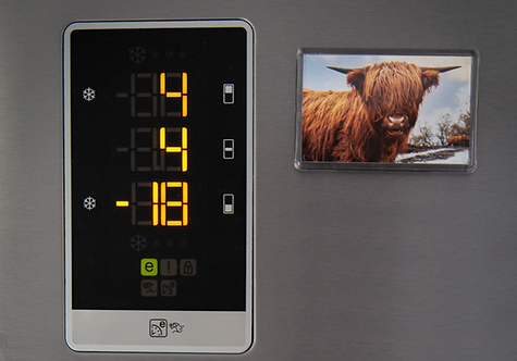 Happy Highland Coo Magnet