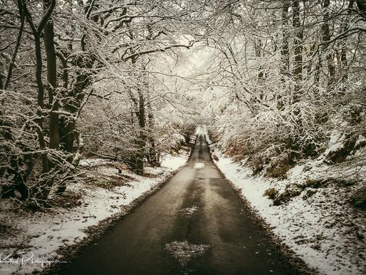 Winter Wonderland Part 2