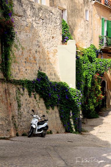 Backstreet Alley Bike