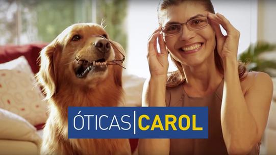 Óticas Carol - Cão destruidor