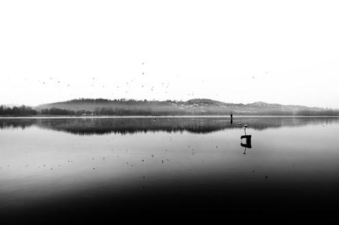 Risveglio al lago