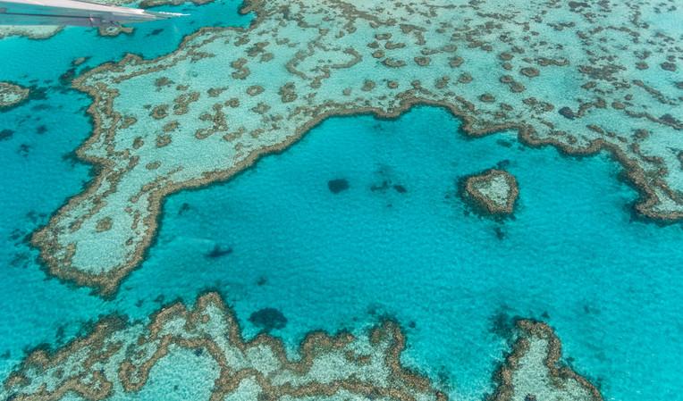 Overhead aerial view of Queensland Coral Reef, Australia