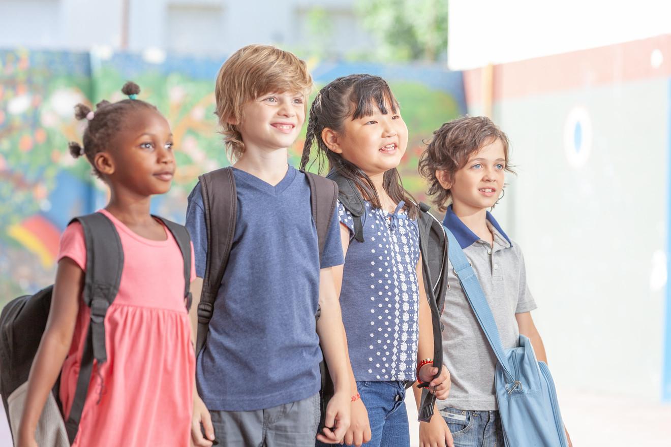 Elementary schoolchildren in school gym