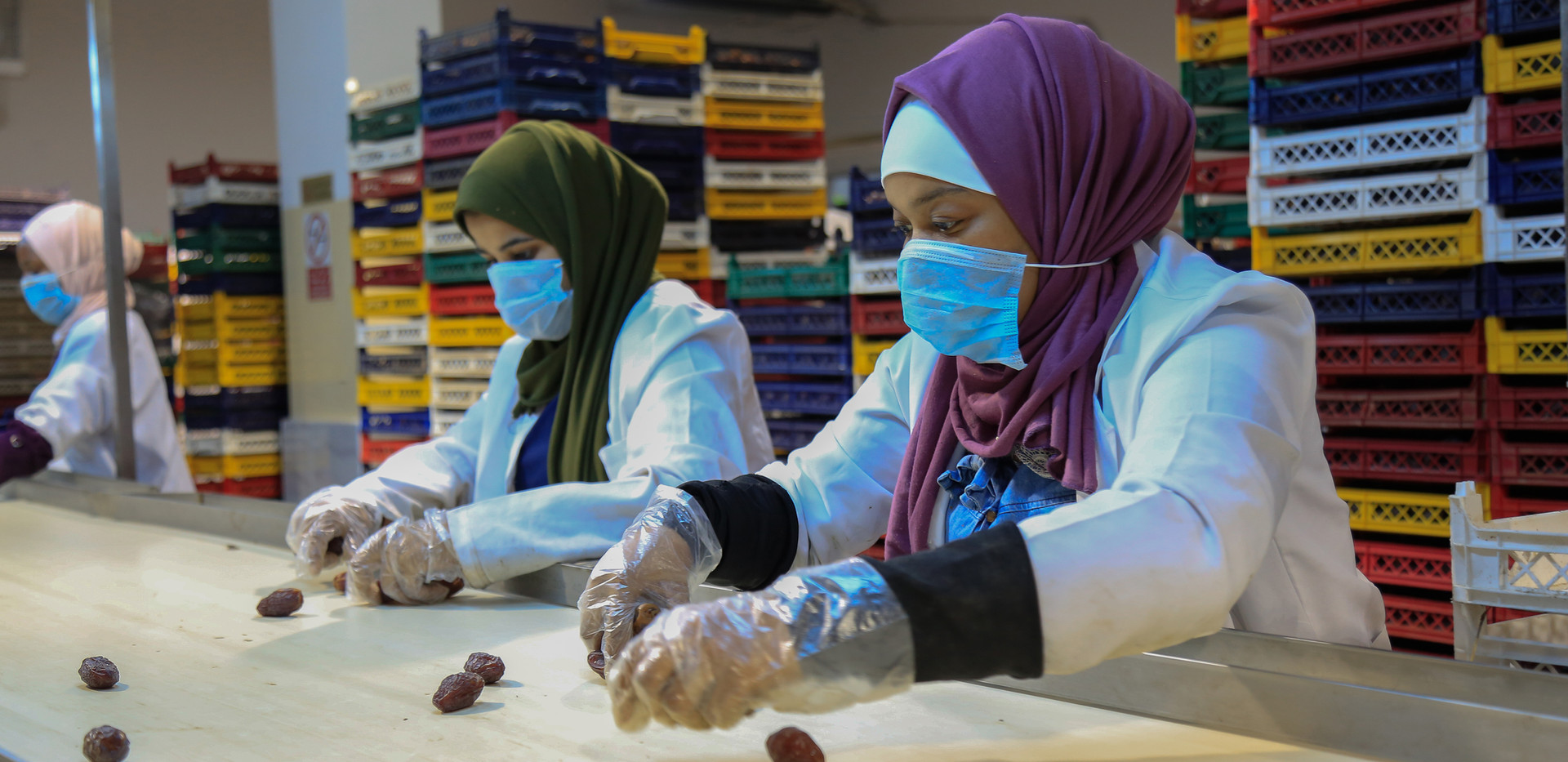 working in dates factory