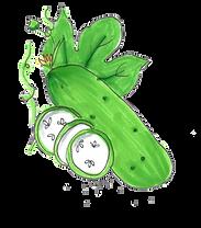komkommer.png