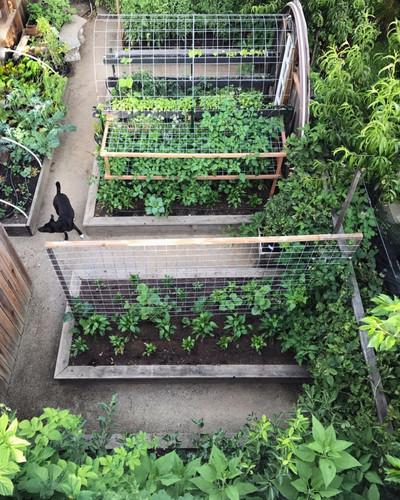urban-farmstead-california-1-819x1024.jp