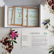 zadenbox bloemen_Correct 02.jpg