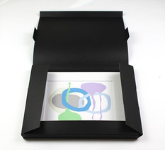 Portfolio Box (open)