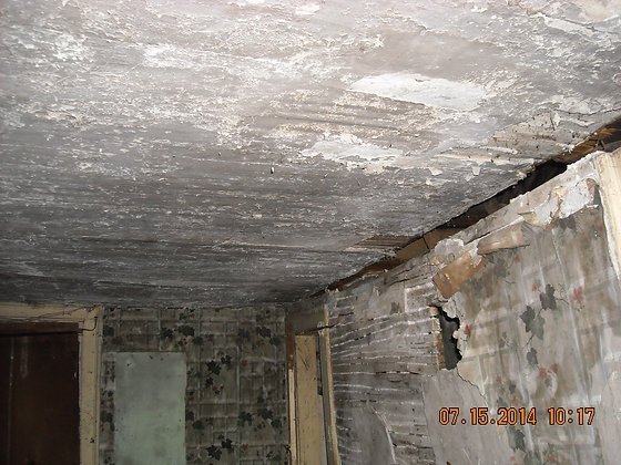 Restore Interior walls, ceilings, woodwork, doors