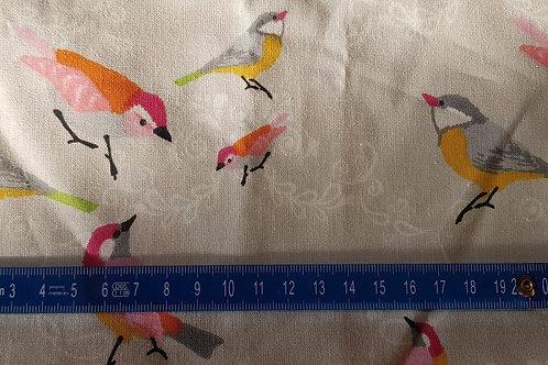 019. Bird
