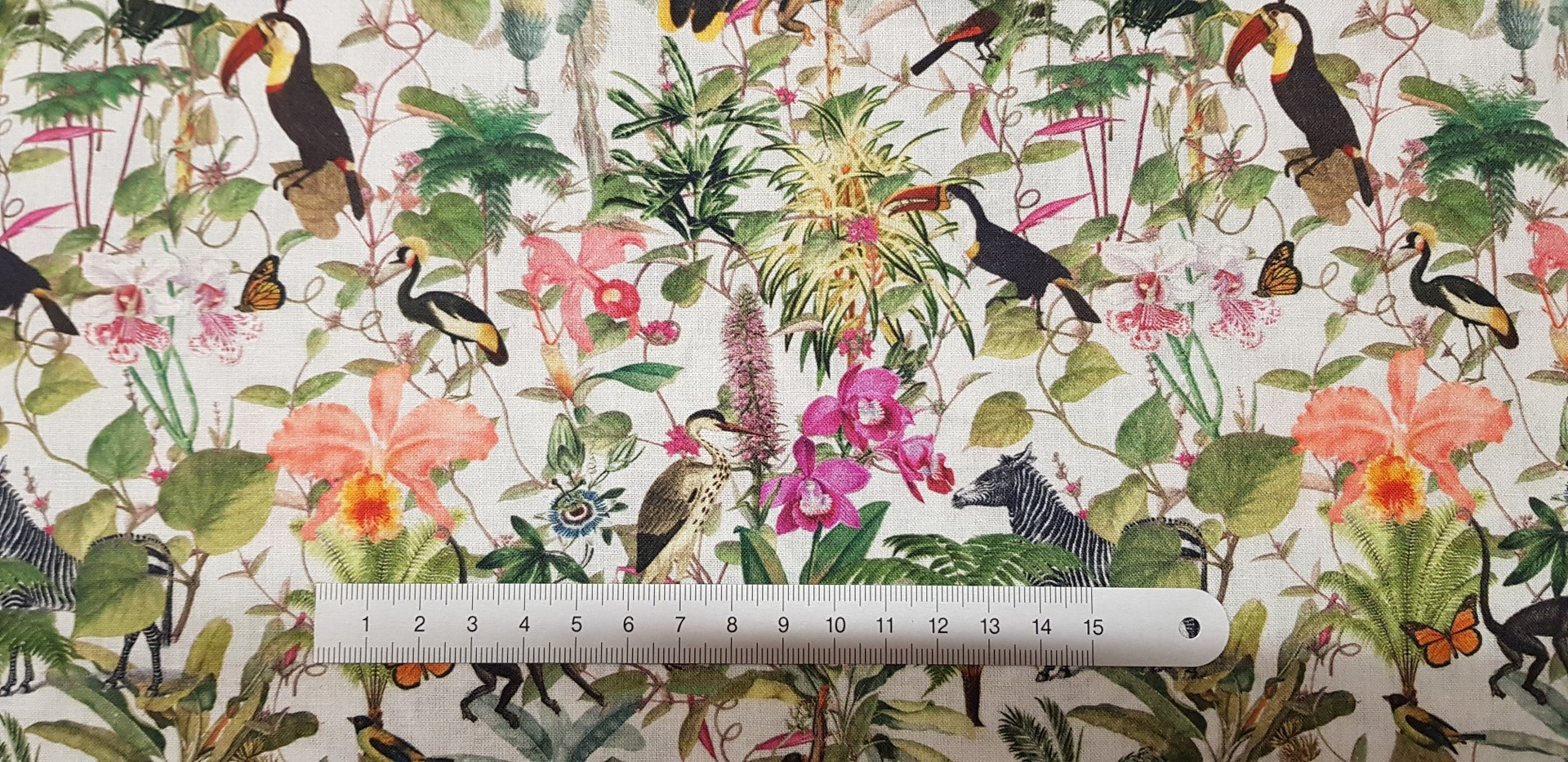 123. Tropical Jungle